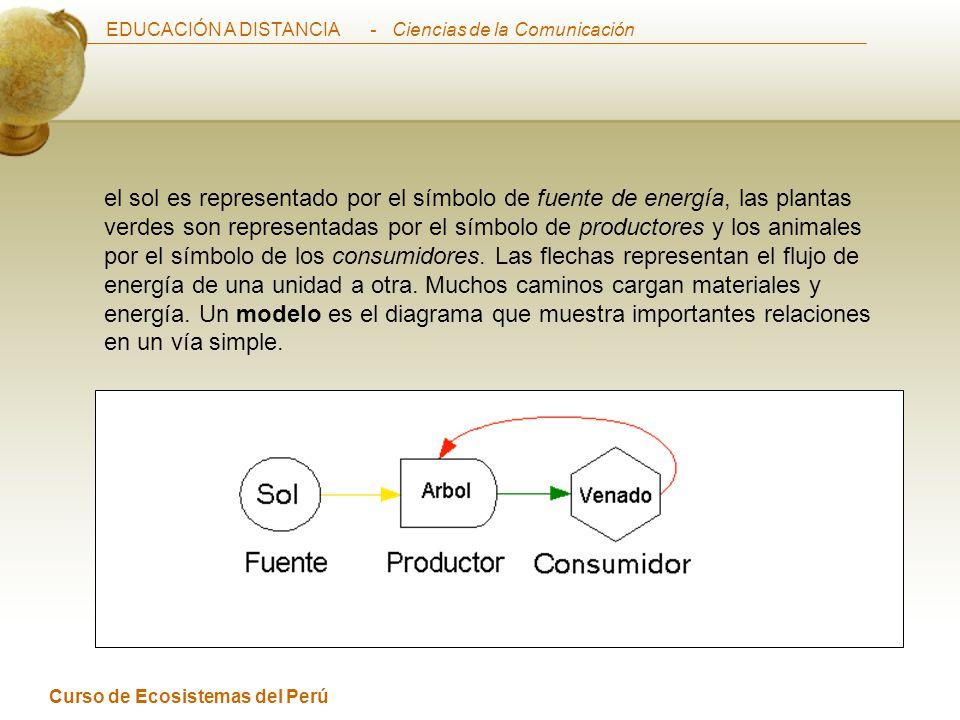 EDUCACIÓN A DISTANCIA Curso de Ecosistemas del Perú - Ciencias de la Comunicación el sol es representado por el símbolo de fuente de energía, las plantas verdes son representadas por el símbolo de productores y los animales por el símbolo de los consumidores.
