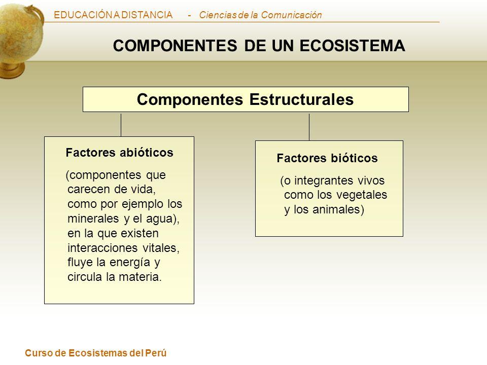 EDUCACIÓN A DISTANCIA Curso de Ecosistemas del Perú - Ciencias de la Comunicación Componentes Estructurales COMPONENTES DE UN ECOSISTEMA Factores bióticos (o integrantes vivos como los vegetales y los animales) Factores abióticos (componentes que carecen de vida, como por ejemplo los minerales y el agua), en la que existen interacciones vitales, fluye la energía y circula la materia.