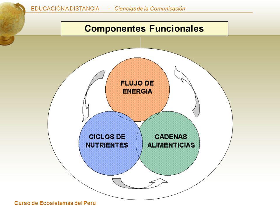 EDUCACIÓN A DISTANCIA Curso de Ecosistemas del Perú - Ciencias de la Comunicación Componentes Funcionales