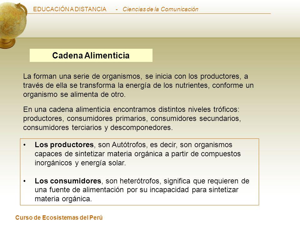 EDUCACIÓN A DISTANCIA Curso de Ecosistemas del Perú - Ciencias de la Comunicación Cadena Alimenticia La forman una serie de organismos, se inicia con los productores, a través de ella se transforma la energía de los nutrientes, conforme un organismo se alimenta de otro.