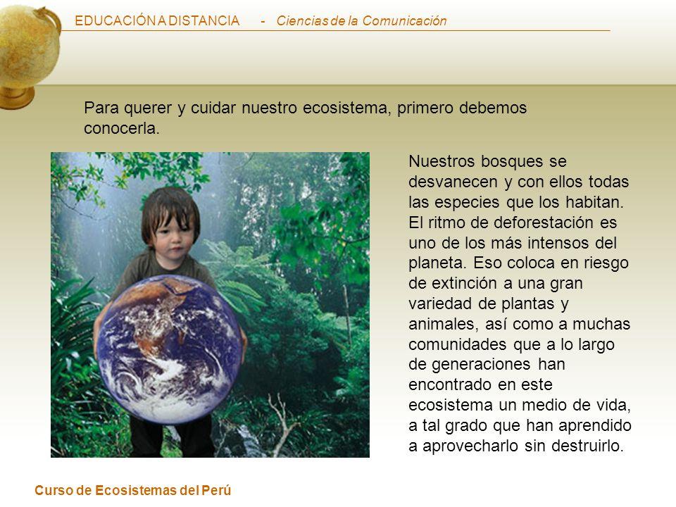 EDUCACIÓN A DISTANCIA Curso de Ecosistemas del Perú - Ciencias de la Comunicación Para querer y cuidar nuestro ecosistema, primero debemos conocerla.