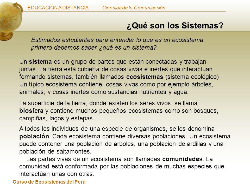 EDUCACIÓN A DISTANCIA Curso de Ecosistemas del Perú - Ciencias de la Comunicación ¿Qué son los Sistemas.