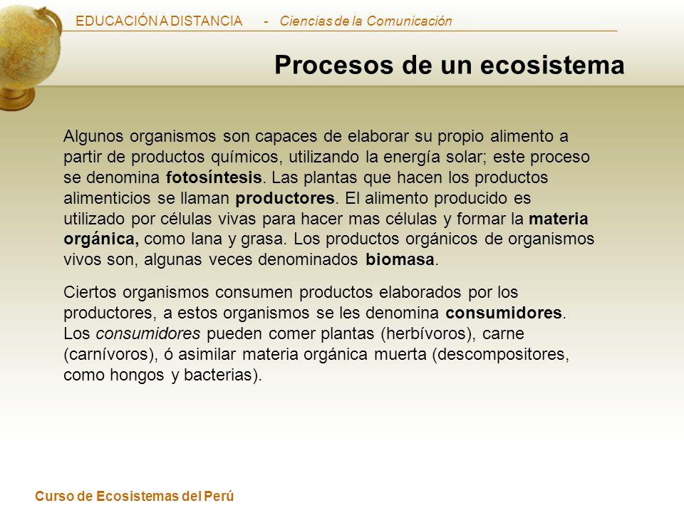EDUCACIÓN A DISTANCIA Curso de Ecosistemas del Perú - Ciencias de la Comunicación Luego de que el consumidor ha digerido y utilizado este alimento, restan pocos productos químicos de desecho.