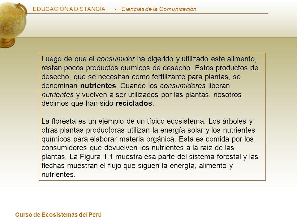 EDUCACIÓN A DISTANCIA Curso de Ecosistemas del Perú - Ciencias de la Comunicación Los símbolos son sencillos y establecen gráficamente las relaciones de los sistemas.