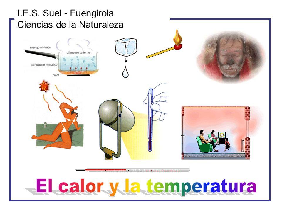 I.E.S. Suel - Fuengirola Ciencias de la Naturaleza