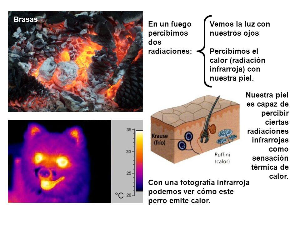 Brasas Vemos la luz con nuestros ojos Percibimos el calor (radiación infrarroja) con nuestra piel.