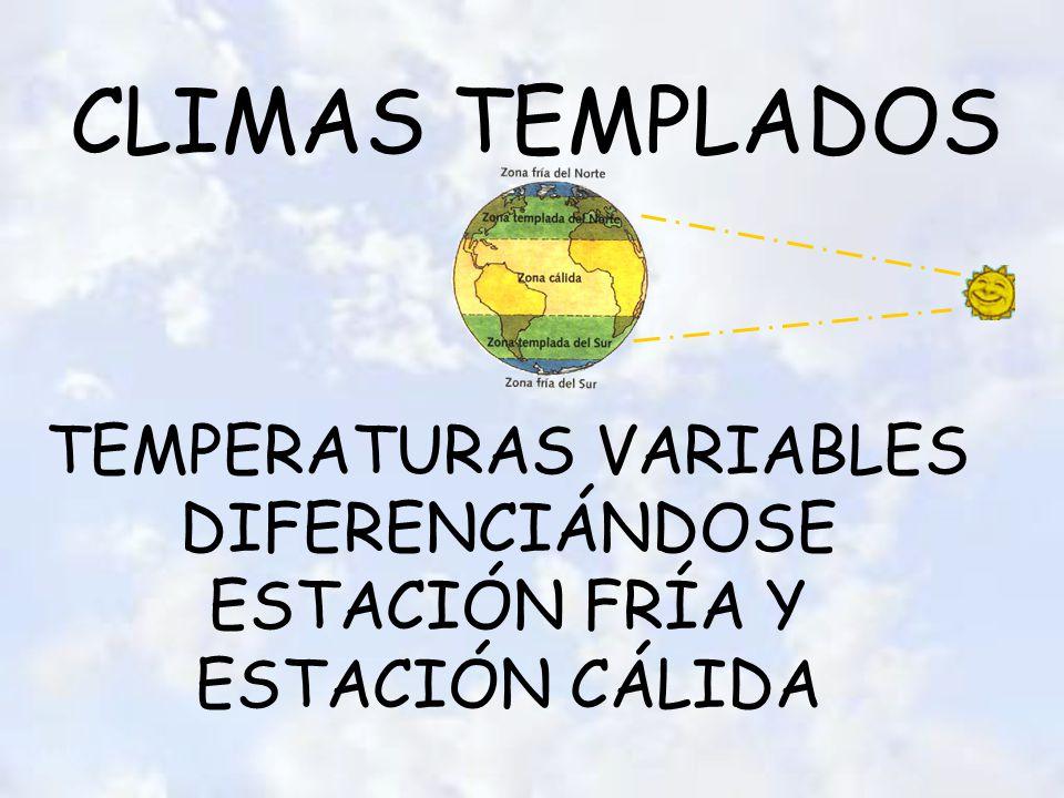 CLIMAS TEMPLADOS TEMPERATURAS VARIABLES DIFERENCIÁNDOSE ESTACIÓN FRÍA Y ESTACIÓN CÁLIDA