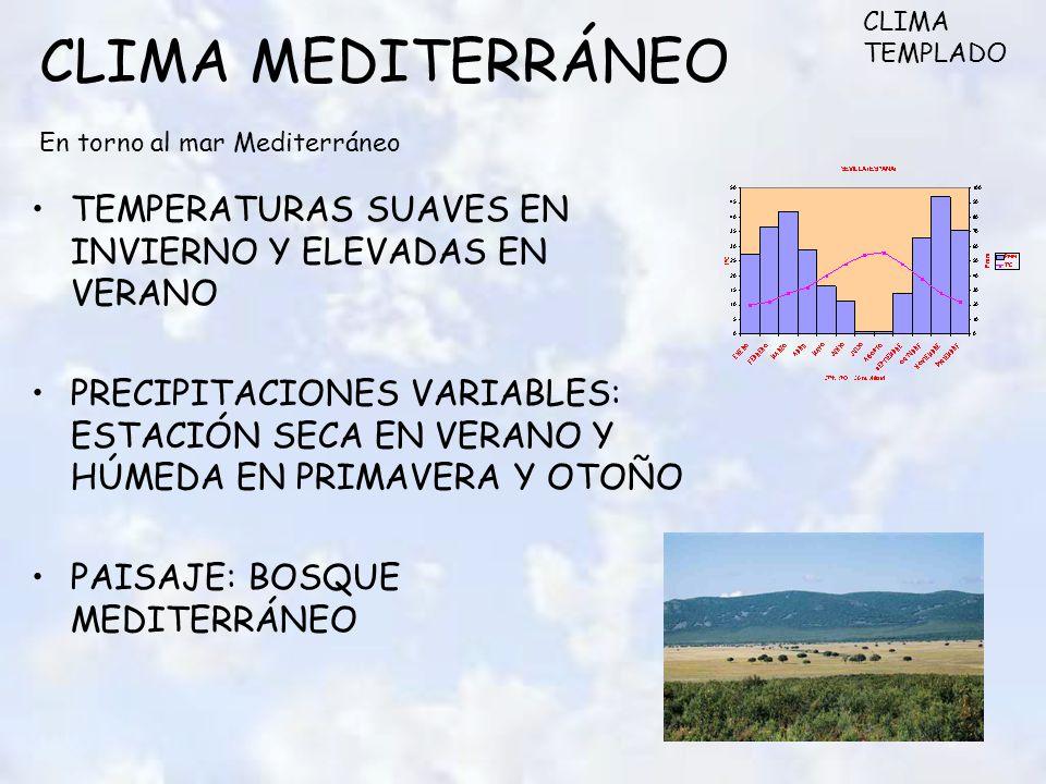 CLIMA MEDITERRÁNEO En torno al mar Mediterráneo TEMPERATURAS SUAVES EN INVIERNO Y ELEVADAS EN VERANO PRECIPITACIONES VARIABLES: ESTACIÓN SECA EN VERANO Y HÚMEDA EN PRIMAVERA Y OTOÑO PAISAJE: BOSQUE MEDITERRÁNEO CLIMA TEMPLADO