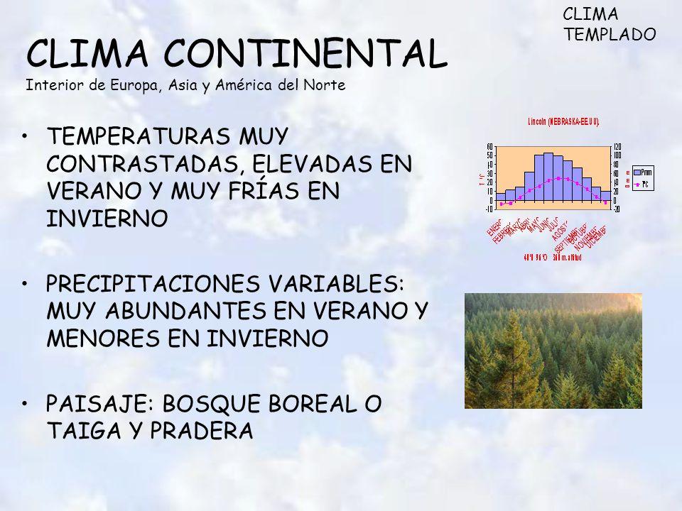 CLIMA CONTINENTAL Interior de Europa, Asia y América del Norte TEMPERATURAS MUY CONTRASTADAS, ELEVADAS EN VERANO Y MUY FRÍAS EN INVIERNO PRECIPITACIONES VARIABLES: MUY ABUNDANTES EN VERANO Y MENORES EN INVIERNO PAISAJE: BOSQUE BOREAL O TAIGA Y PRADERA CLIMA TEMPLADO