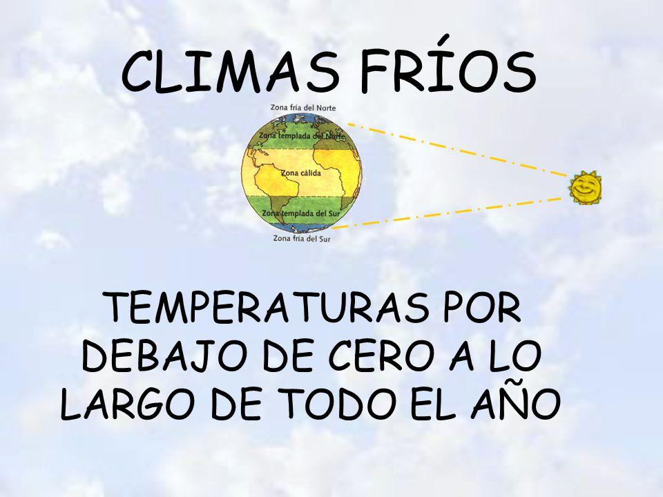 CLIMAS FRÍOS TEMPERATURAS POR DEBAJO DE CERO A LO LARGO DE TODO EL AÑO