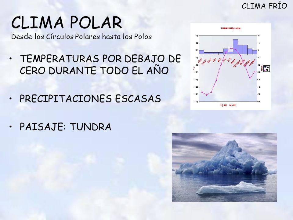 CLIMA POLAR Desde los Círculos Polares hasta los Polos TEMPERATURAS POR DEBAJO DE CERO DURANTE TODO EL AÑO PRECIPITACIONES ESCASAS PAISAJE: TUNDRA CLIMA FRÍO