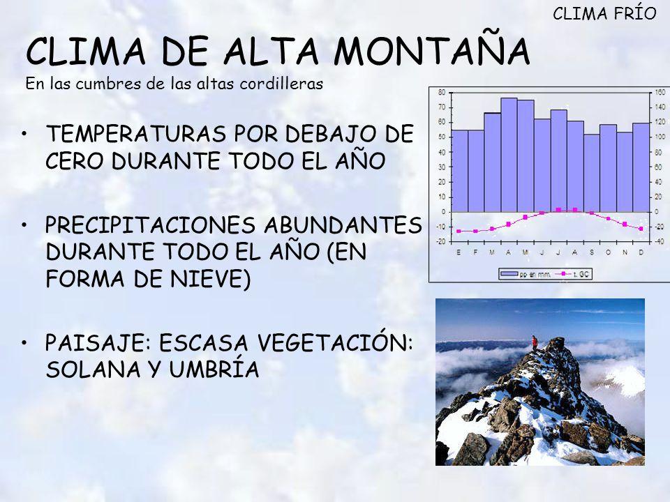 CLIMA DE ALTA MONTAÑA En las cumbres de las altas cordilleras TEMPERATURAS POR DEBAJO DE CERO DURANTE TODO EL AÑO PRECIPITACIONES ABUNDANTES DURANTE TODO EL AÑO (EN FORMA DE NIEVE) PAISAJE: ESCASA VEGETACIÓN: SOLANA Y UMBRÍA CLIMA FRÍO