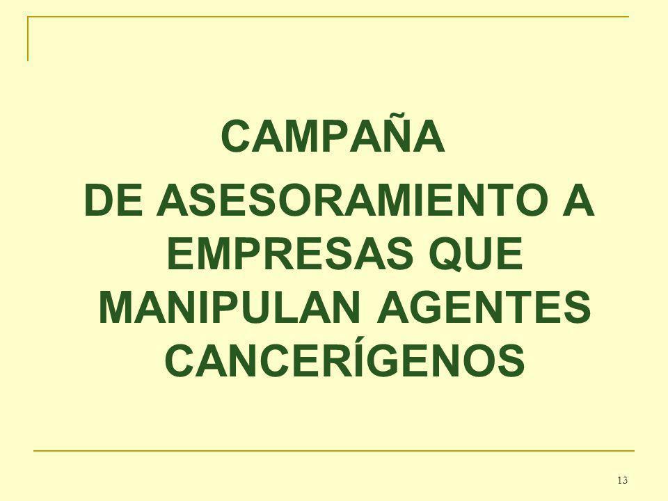 CAMPAÑA DE ASESORAMIENTO A EMPRESAS QUE MANIPULAN AGENTES CANCERÍGENOS 13