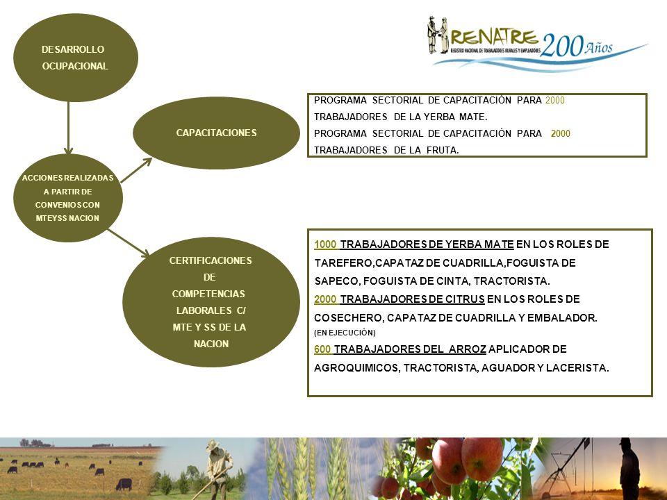 ACCIONES REALIZADAS A PARTIR DE CONVENIOS CON MTEYSS NACION 1000 TRABAJADORES DE YERBA MATE EN LOS ROLES DE TAREFERO,CAPATAZ DE CUADRILLA,FOGUISTA DE SAPECO, FOGUISTA DE CINTA, TRACTORISTA.