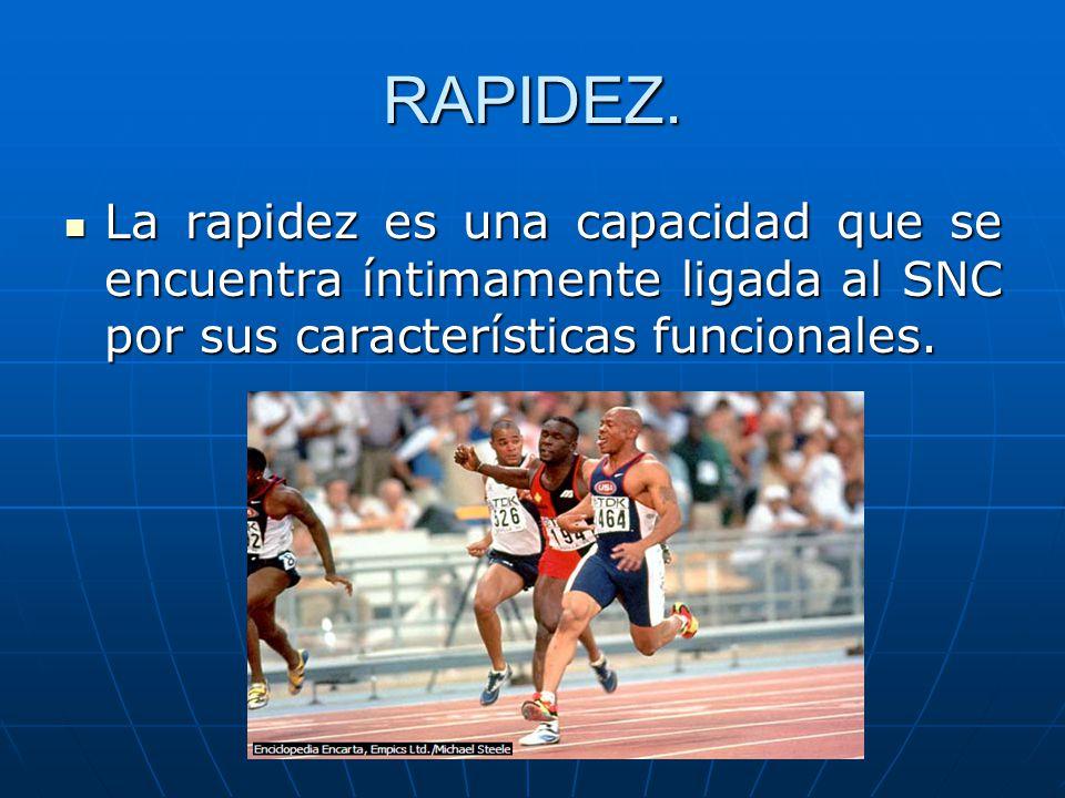 RAPIDEZ. La rapidez es una capacidad que se encuentra íntimamente ligada al SNC por sus características funcionales. La rapidez es una capacidad que s