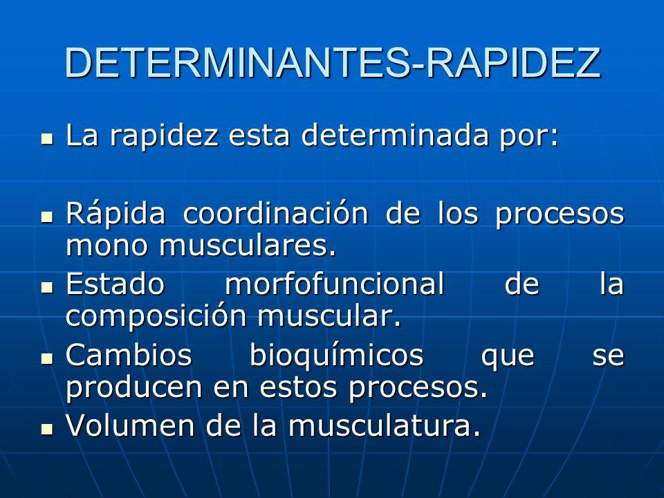 DETERMINANTES-RAPIDEZ La rapidez esta determinada por: La rapidez esta determinada por: Rápida coordinación de los procesos mono musculares. Rápida co