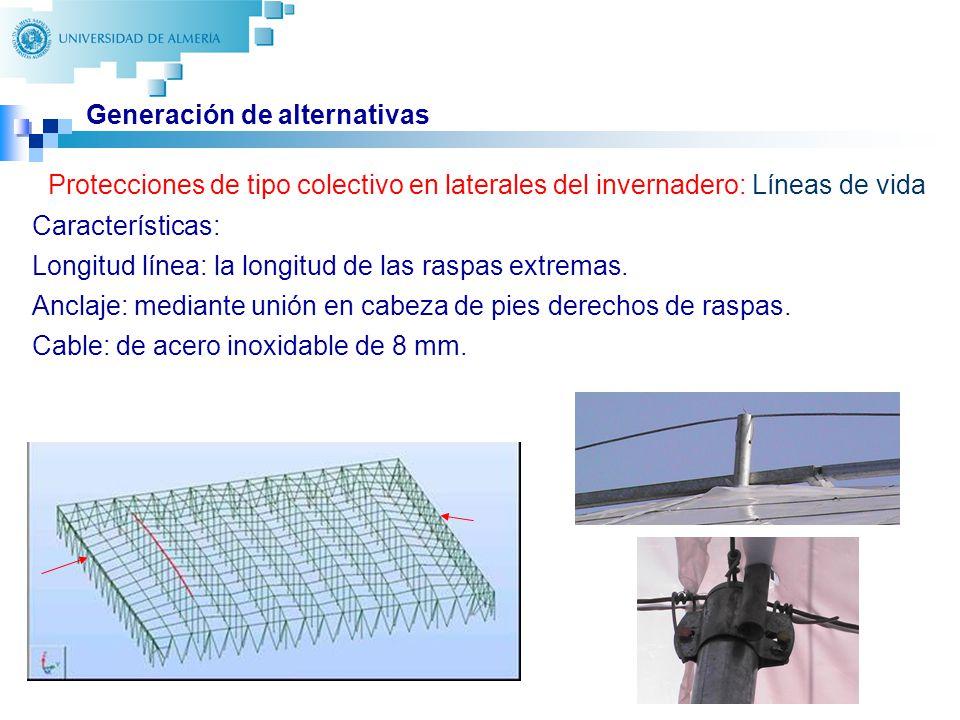 23 Generación de alternativas Protecciones de tipo colectivo en laterales del invernadero: Líneas de vida Características: Longitud línea: la longitud de las raspas extremas.