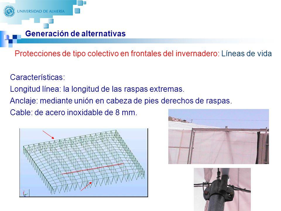 24 Generación de alternativas Protecciones de tipo colectivo en frontales del invernadero: Líneas de vida Características: Longitud línea: la longitud de las raspas extremas.