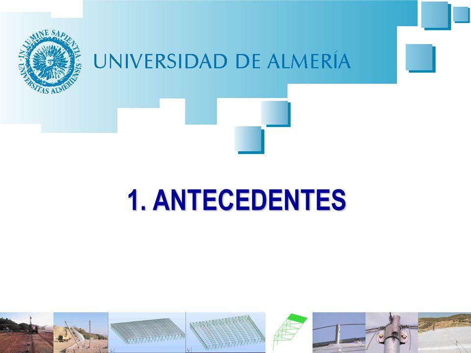 4 Antecedentes: Problema de siniestralidad laboral en construcción de invernaderos ASPECTOS CONDICIONANTES DE LA SINIESTRALIDAD Procedimientos de construcción artesanales.