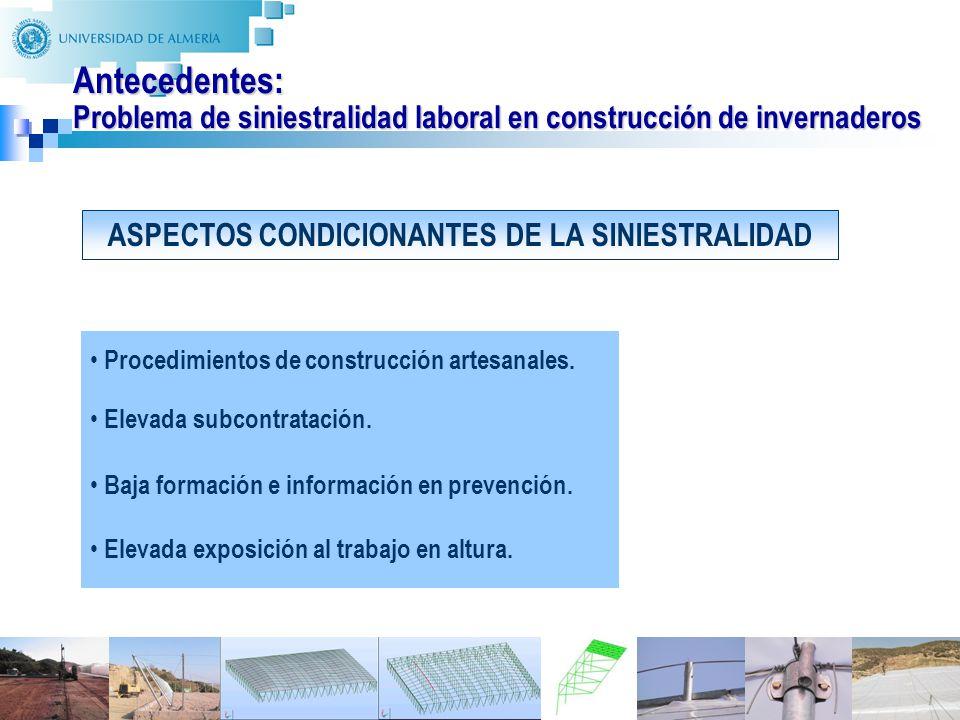 4 Antecedentes: Problema de siniestralidad laboral en construcción de invernaderos ASPECTOS CONDICIONANTES DE LA SINIESTRALIDAD Procedimientos de cons