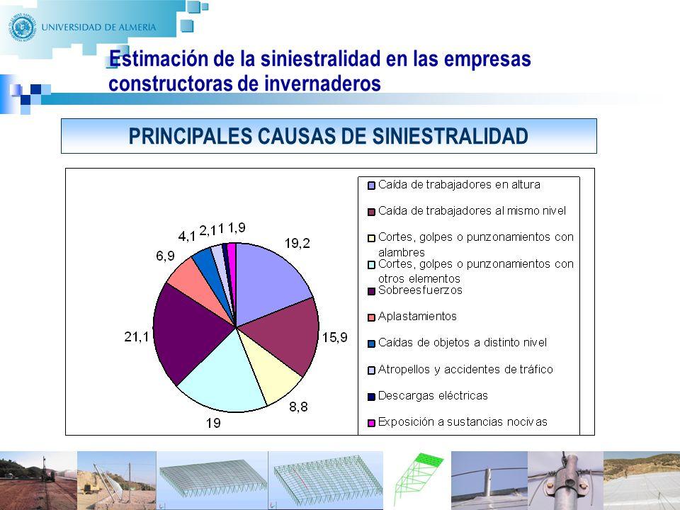 6 Estimación de la siniestralidad en las empresas constructoras de invernaderos PRINCIPALES CAUSAS DE SINIESTRALIDAD