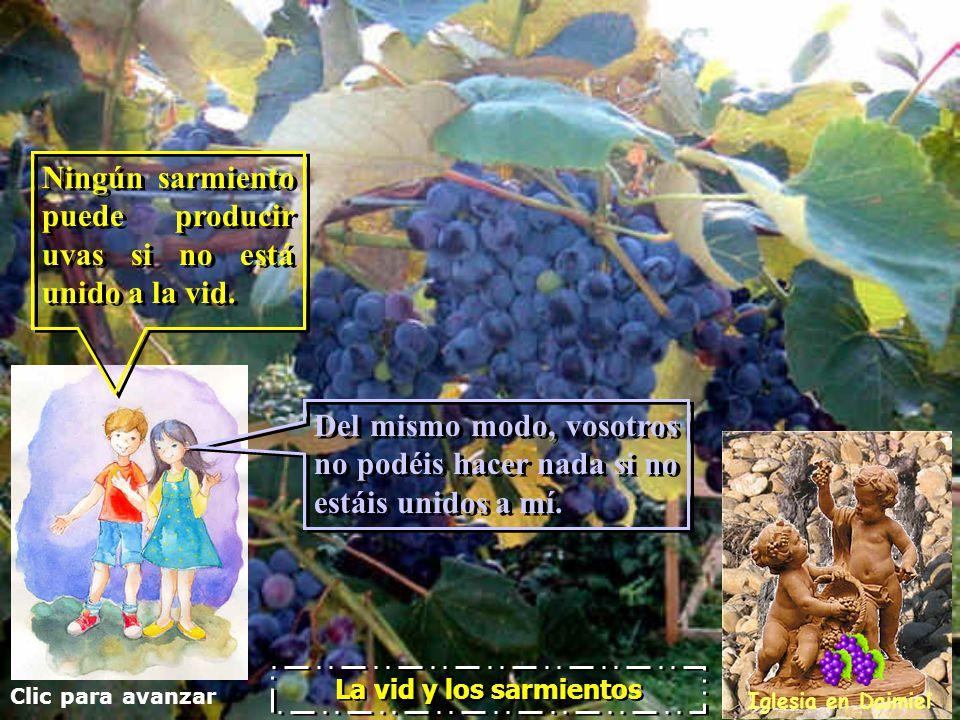 Clic para avanzar Iglesia en Daimiel La vid y los sarmientos Vosotros ya estáis limpios, gracias al mensaje que os he anunciado. Permaneced unidos a m