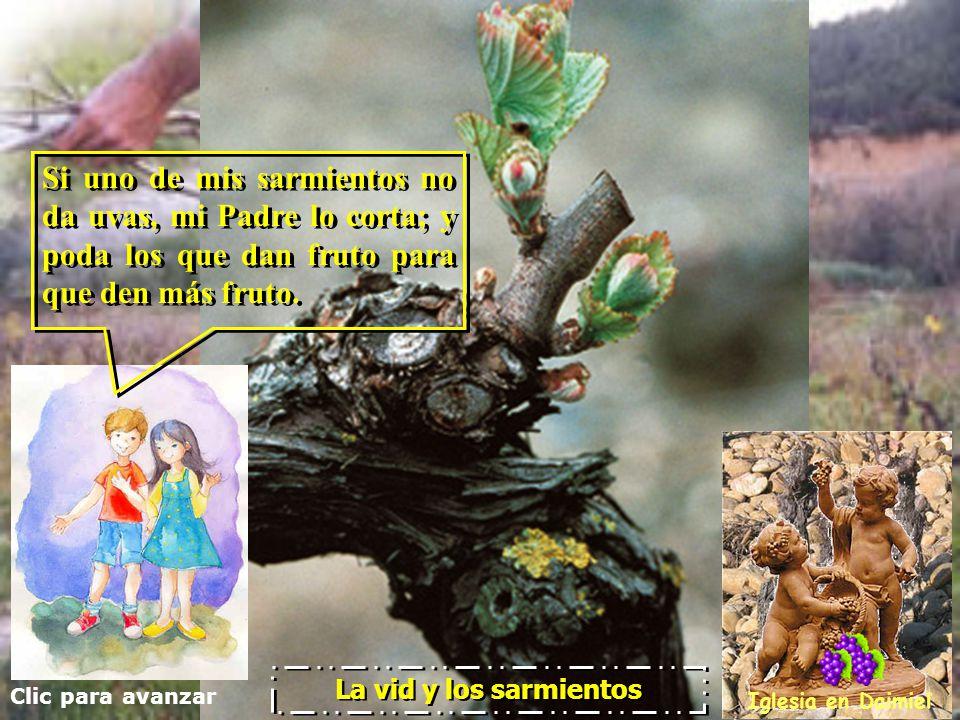 Clic para avanzar Iglesia en Daimiel La vid y los sarmientos Jesús continuó diciendo a sus discípulos: Jesús continuó diciendo a sus discípulos: Yo so
