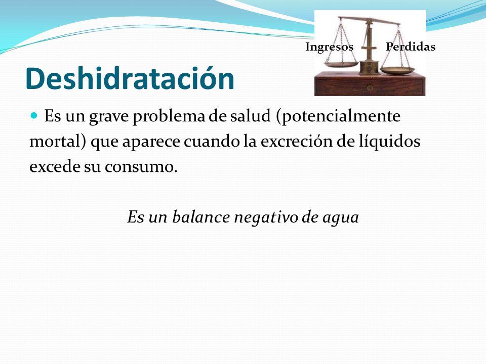 Deshidratación Es un grave problema de salud (potencialmente mortal) que aparece cuando la excreción de líquidos excede su consumo. Es un balance nega