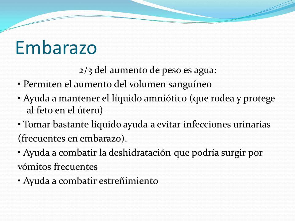 Embarazo 2/3 del aumento de peso es agua: Permiten el aumento del volumen sanguíneo Ayuda a mantener el líquido amniótico (que rodea y protege al feto
