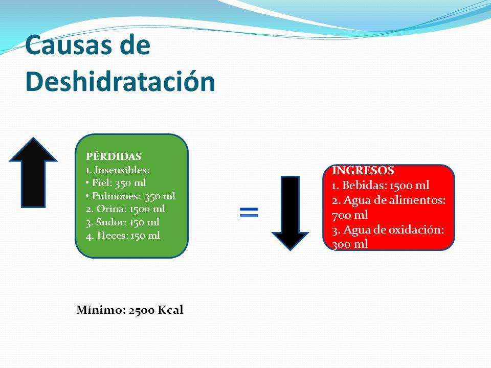 Causas de Deshidratación PÉRDIDAS 1. Insensibles: Piel: 350 ml Pulmones: 350 ml 2. Orina: 1500 ml 3. Sudor: 150 ml 4. Heces: 150 ml INGRESOS 1. Bebida