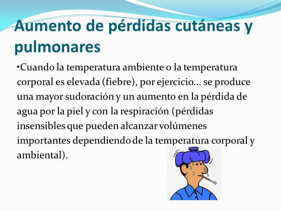 Aumento de pérdidas cutáneas y pulmonares Cuando la temperatura ambiente o la temperatura corporal es elevada (fiebre), por ejercicio... se produce un