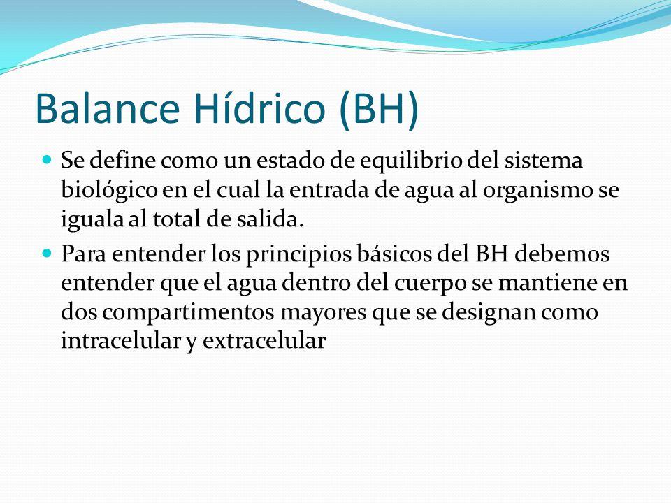 Balance Hídrico (BH) Se define como un estado de equilibrio del sistema biológico en el cual la entrada de agua al organismo se iguala al total de sal