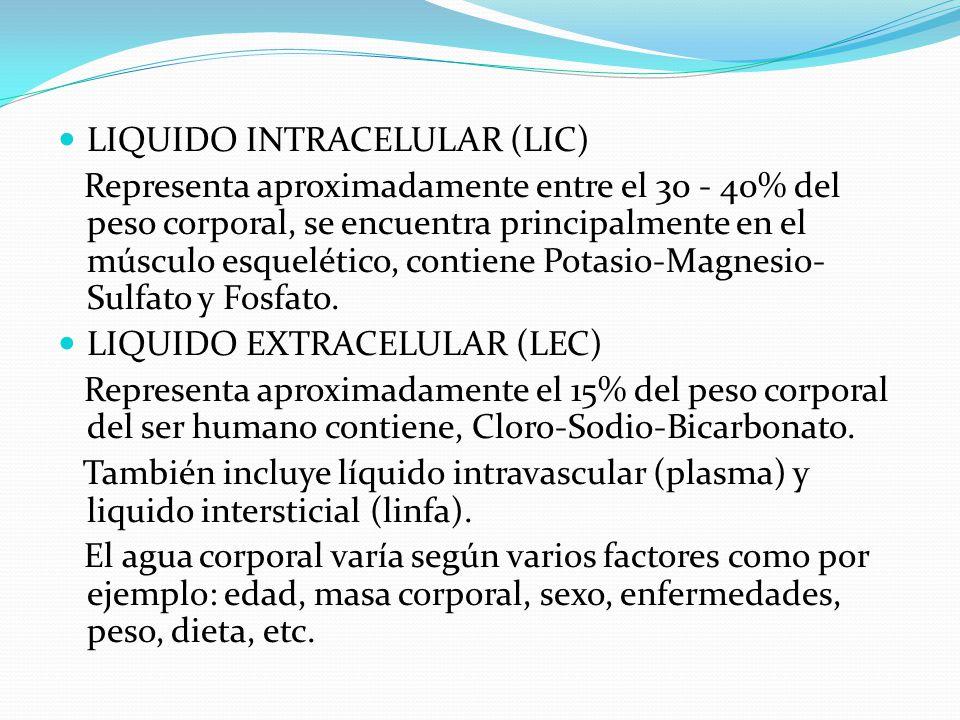 LIQUIDO INTRACELULAR (LIC) Representa aproximadamente entre el 30 - 40% del peso corporal, se encuentra principalmente en el músculo esquelético, cont