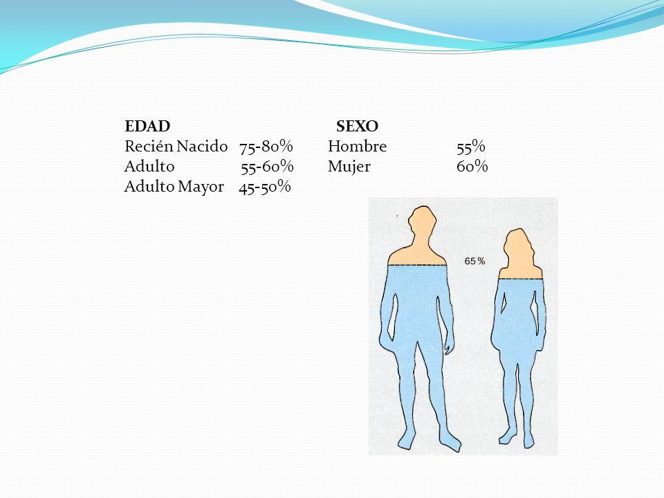 EDAD SEXO Recién Nacido 75-80% Hombre 55% Adulto 55-60% Mujer 60% Adulto Mayor 45-50%
