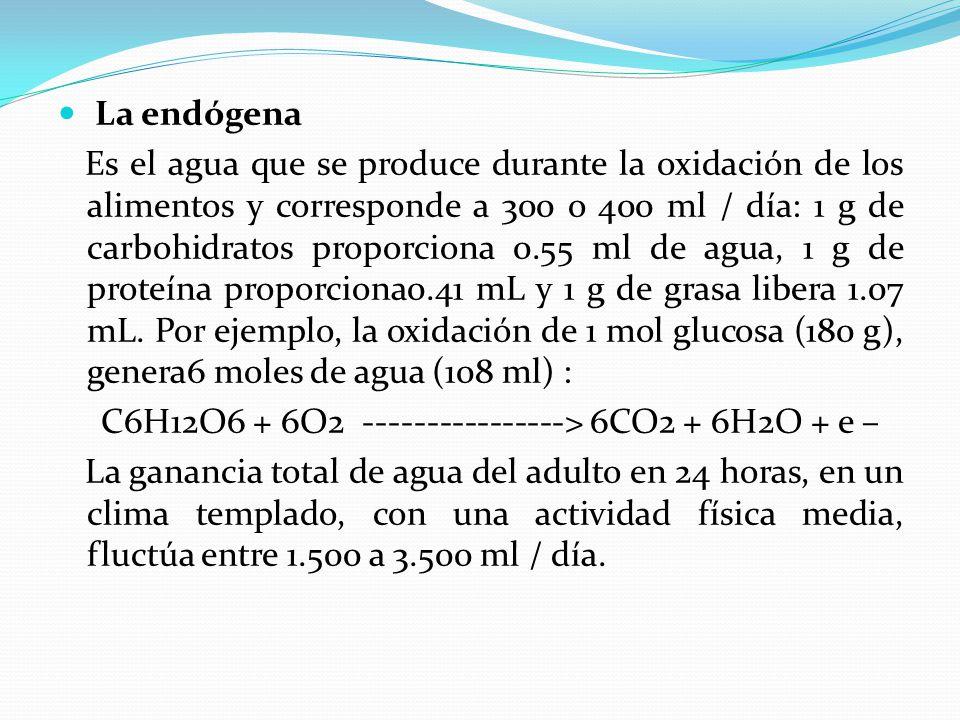 La endógena Es el agua que se produce durante la oxidación de los alimentos y corresponde a 300 o 400 ml / día: 1 g de carbohidratos proporciona 0.55