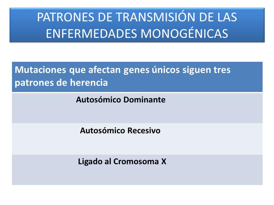 PATRONES DE TRANSMISIÓN DE LAS ENFERMEDADES MONOGÉNICAS Mutaciones que afectan genes únicos siguen tres patrones de herencia Autosómico Dominante Autosómico Recesivo Ligado al Cromosoma X