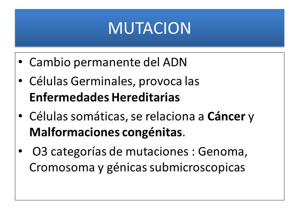 MUTACION Cambio permanente del ADN Células Germinales, provoca las Enfermedades Hereditarias Células somáticas, se relaciona a Cáncer y Malformaciones congénitas.