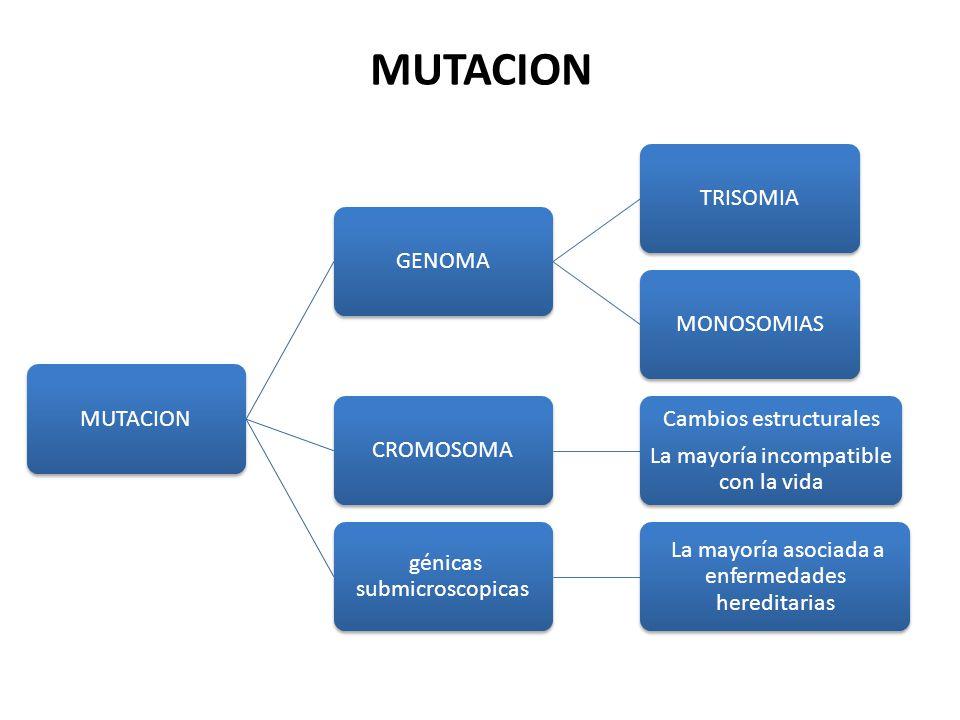 ENFERMEDADES AUTOSÓMICAS RECESIVAS La categoría de trastornos mendelianos más grande.