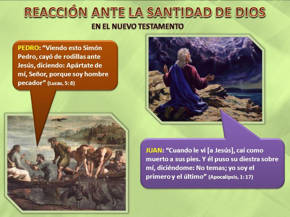 El 14 de mayo de 1851, vi la hermosura y amabilidad de Jesús.