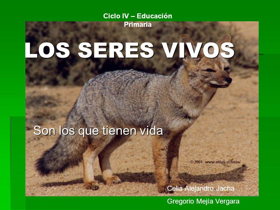 LOS SERES VIVOS Son los que tienen vida Celia Alejandro Jacha Gregorio Mejía Vergara Ciclo IV – Educación Primaria