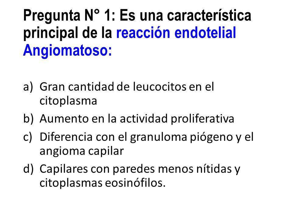 Pregunta N° 1: Es una característica principal de la reacción endotelial Angiomatoso: a)Gran cantidad de leucocitos en el citoplasma b)Aumento en la a