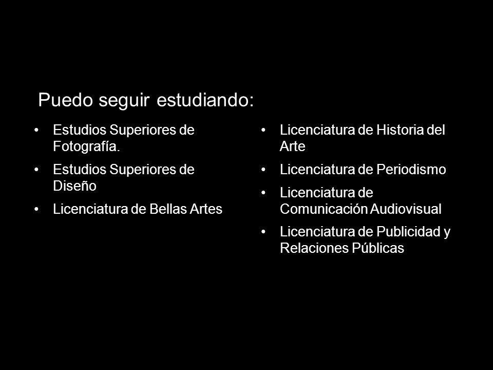 Estudios Superiores de Fotografía. Estudios Superiores de Diseño Licenciatura de Bellas Artes Puedo seguir estudiando: Licenciatura de Historia del Ar
