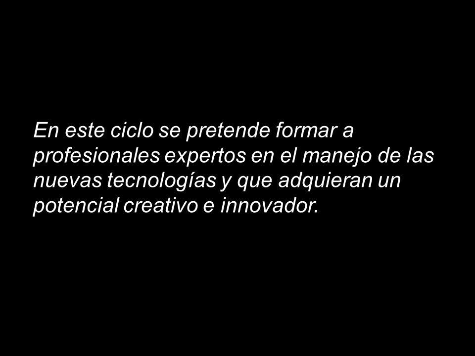 En este ciclo se pretende formar a profesionales expertos en el manejo de las nuevas tecnologías y que adquieran un potencial creativo e innovador.