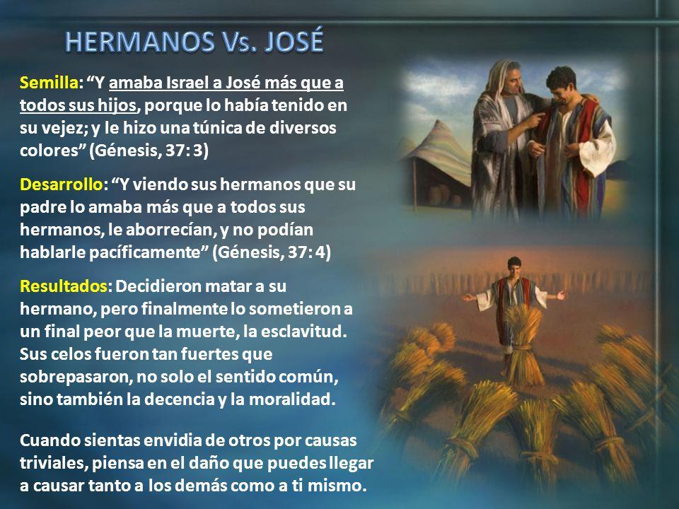 Semilla: Y amaba Israel a José más que a todos sus hijos, porque lo había tenido en su vejez; y le hizo una túnica de diversos colores (Génesis, 37: 3