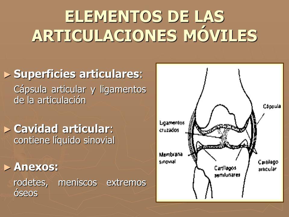 ELEMENTOS DE LAS ARTICULACIONES MÓVILES Superficies articulares: Superficies articulares: Cápsula articular y ligamentos de la articulación Cápsula ar