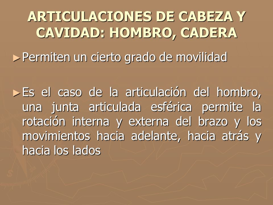 ARTICULACIONES DE CABEZA Y CAVIDAD: HOMBRO, CADERA Permiten un cierto grado de movilidad Permiten un cierto grado de movilidad Es el caso de la articu