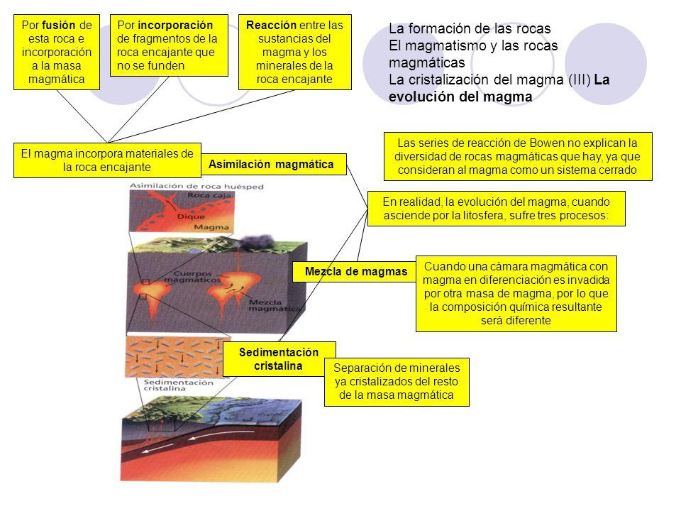 La formación de las rocas El magmatismo y las rocas magmáticas La cristalización del magma (III) La evolución del magma Las series de reacción de Bowe