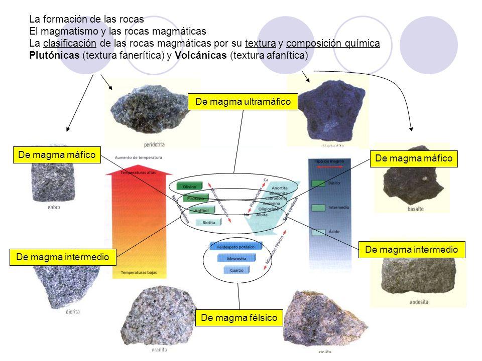 La formación de las rocas El magmatismo y las rocas magmáticas La clasificación de las rocas magmáticas por su textura y composición química Plutónica