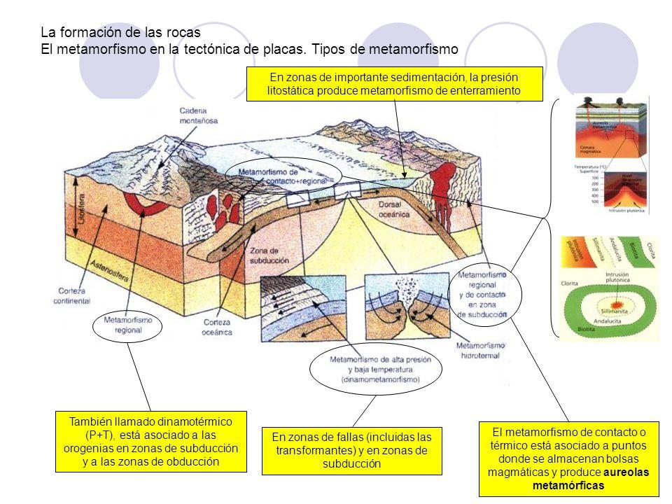 La formación de las rocas El metamorfismo en la tectónica de placas. Tipos de metamorfismo En zonas de fallas (incluidas las transformantes) y en zona