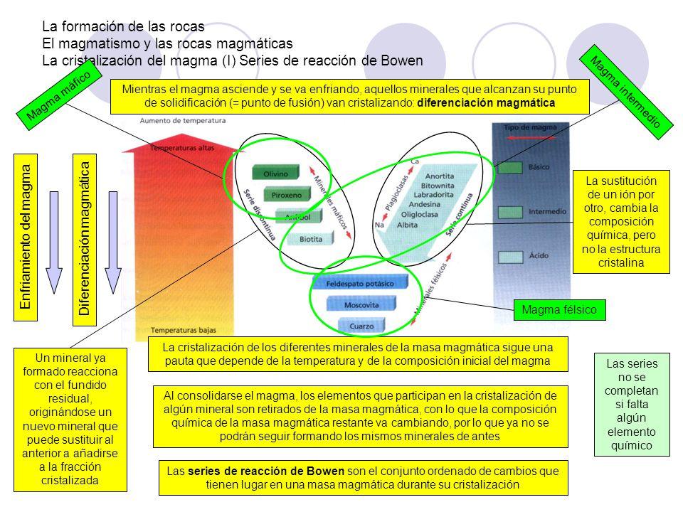 La formación de las rocas El magmatismo y las rocas magmáticas La cristalización del magma (I) Series de reacción de Bowen Mientras el magma asciende